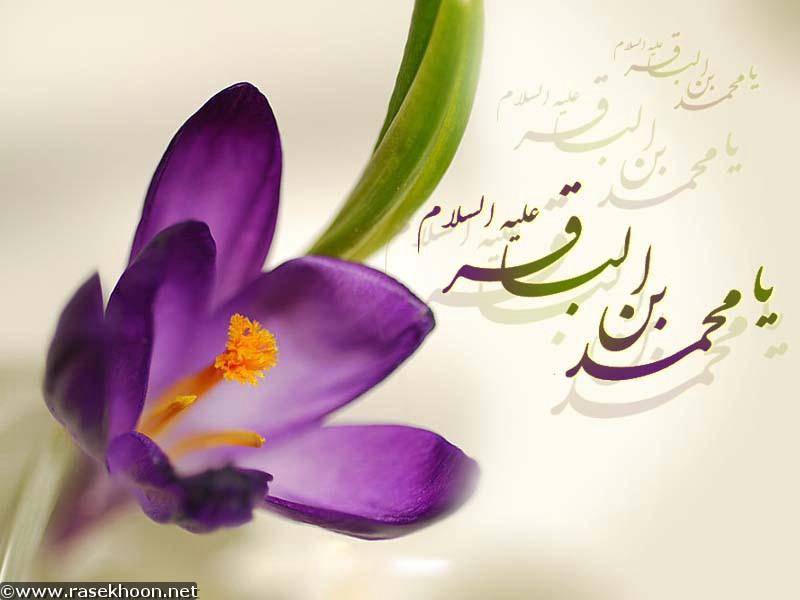 ولادت امام محمد باقر